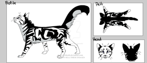 Shadowpaw Ref Sheet by PandaBearie