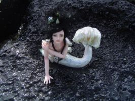 Mermaid Sea Siren by LindaJaneThomas