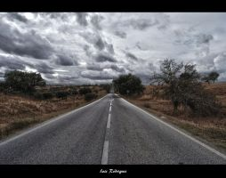 Lonely road by Immuniselectrun
