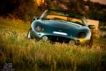 TVR Griffith 500 by alexisgoure