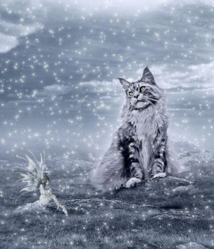 ..My cat winter.. by Flore-stock