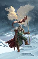 Viking by hokic