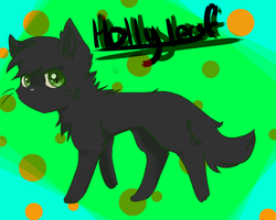 Hollyleaf by Shiiruba