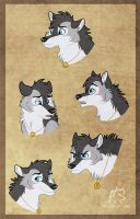 Frodo Expressions by WindWo1f