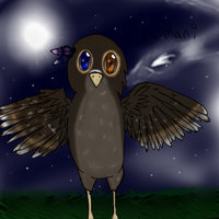 Chumani The Owl by CometStre