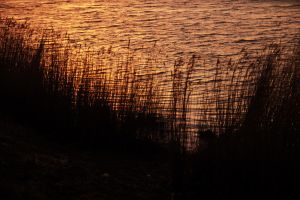 Evening Falls 3 by DisturbedNoise