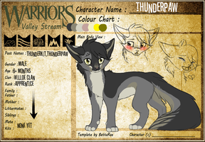 Thunderpaw WVS by ipann