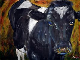 Kerry Cow by William-Carroll