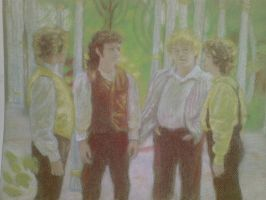 The four hobbits from LOTR. by inarion7