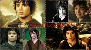 Frodo Collage by WolfLover231