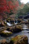 Autumn River by bill470