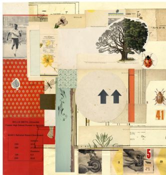 collage 6 by woefoep