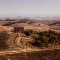 sole di toscana 2925 by bagnino