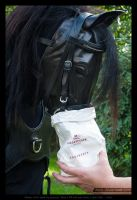 Marzipan - The real treat for a Hexen-Horse by AbrX
