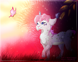 In the Morning by WhiteLiolynx