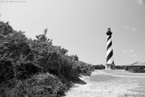 Black and White Cape Hatteras by eanimusic