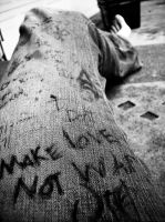 Make love..Not War by KKP71408