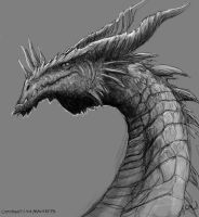 Dragon-10-20-v3 by maugryph