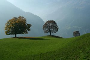 Hills of Switzerland by kozaj