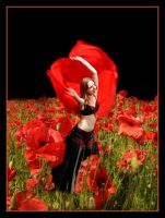 dancing thumbelina and poppies by scarabbeo
