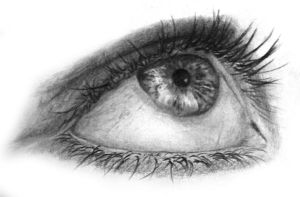 Eye study by Tacoly
