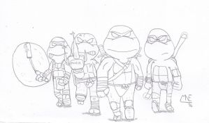 Teenage Mutant Ninja Turtles by MrNintMan