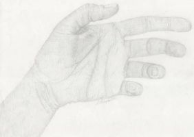 Hand Drawing 2 by StephieT