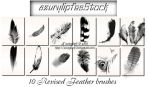 Revised Feather brushes by AzurylipfesStock