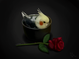 Rest In Peace My Little Birb 15/7/16 by NoteS28