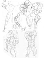 60 second gesture sketches  2 by igm-transformer