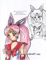 It's ChibiUsa Sailor ChibiMoon by alaer