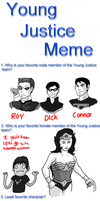 Young Justice Meme by valkdaombras