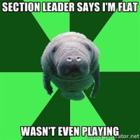 Section Leader Fail? by ChaosTheory05