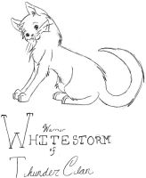 Whitestorm of... by Sandyrinky by StarClan