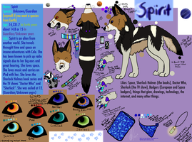 Spirit's NEW! Updated 2012 Ref by SpiritInSpace