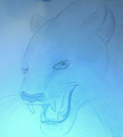 Realistic Panther by boxes-of-foxxes