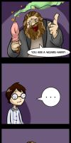 You are a wizard Harry by elvereth
