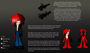 DS Kage Reference Sheet[More info below] by pokegirl150