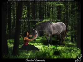 Constant Companion by Mean-cat