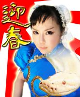 Chun-Li Cosplay HAPPY NEW YEAR! by Elin-Kuzunoha