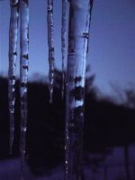 Icicles (five) by tothethirdbar