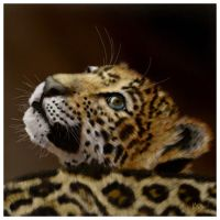 Jaguar - digital painting by Giselle-M