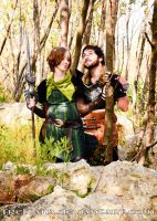 Dragon Age - Moments by freltana