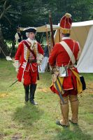 Cannock Chase Military History Weekend 2015 (16) by masimage