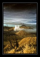 Bromo by melintir