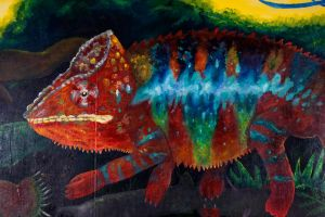 Mural Piece 8- Close up Chameleon by Otterrific