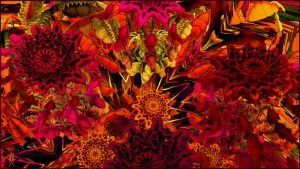 Red Jungle Fever by audre