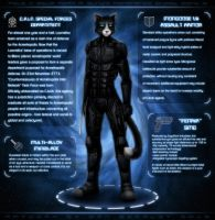 LU: The New Dawn - Sung's Reference Sheet, Part 2 by DanScarlet