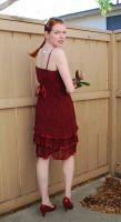 Red Dress Stock 14 by chamberstock