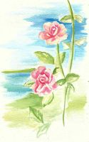 watercolor roses by Asumei